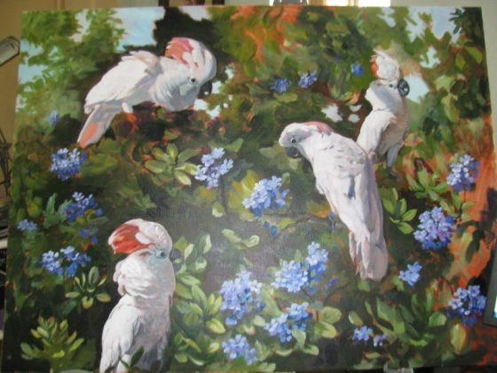 painting of 4 cockatoos by martha dodd
