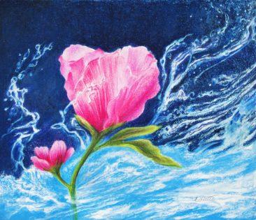 Tuttle, Water Rose, Hirdie Girdie Gallery