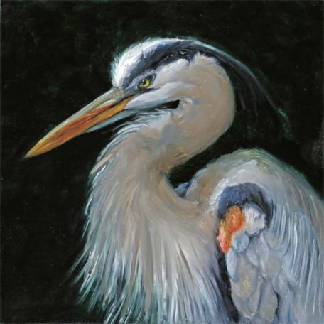 Elegant Great Bue - original 6 x 6 oil on panel.