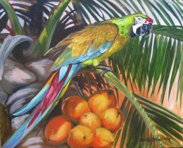 painting of colorful macaw perched in a coconut palm by martha dodd